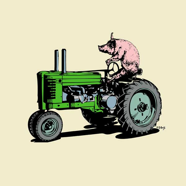 Pig On A Tractor